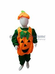 Buy or Rent vegetables costumes for kids in India | BookMyCostumes