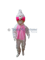 Buy or Rent kids Fancy Dress Costumes online  | BookMyCostume